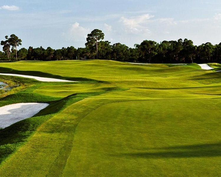 Results: 2018 Assistant PGA Professional Championship